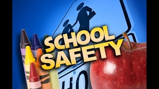 New State Budget Includes Jump In Public School Safety Funding