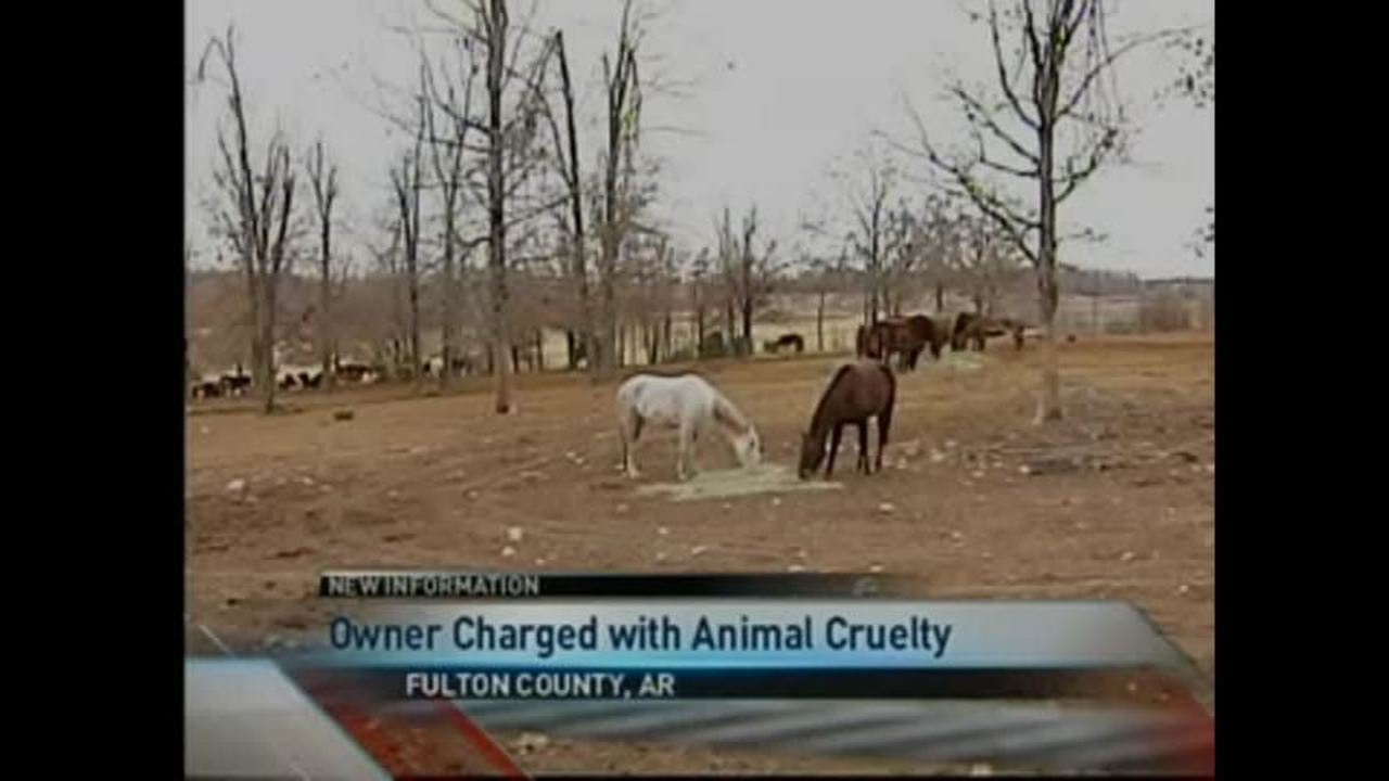 Suspect Charged in Horse Abuse Case Near Viola, AR