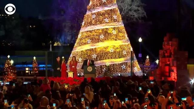 web extra president first lady light national christmas tree