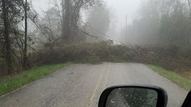 Damage Reports from Friday Evening Storms